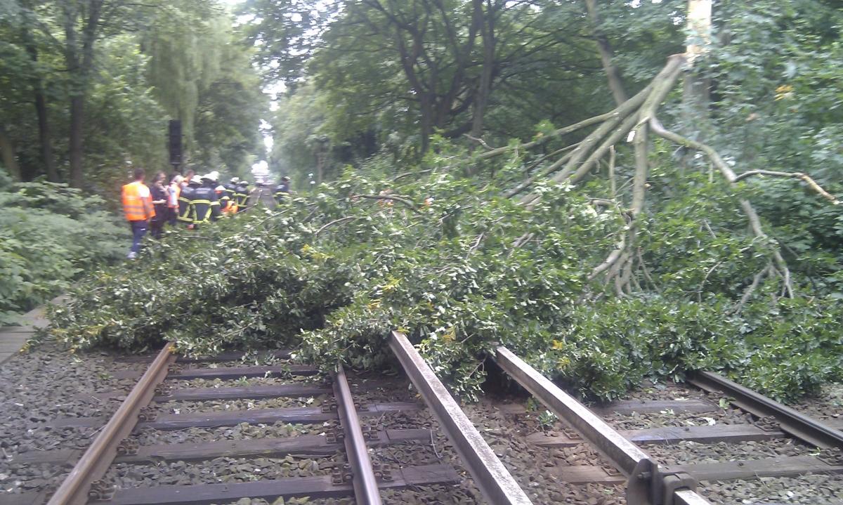 Baum auf Gleis